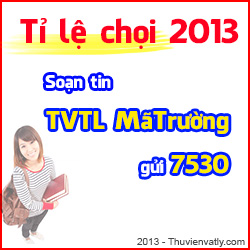 T l chi 2013 SMS